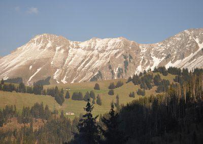 Lavatti-April-2011-007