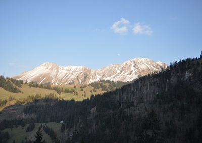 Lavatti-April-2011-035